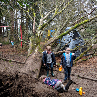 Kids and the Big Tree